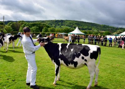 Agricultural Shows